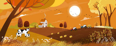 Vector Autumn landscape with sunrise view on harvest field with tractor, framhous,cows and straw bales in the countryside,Panorama view farmlands in fall season with orange foliage,Mid autumn festival Иллюстрация