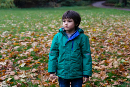 Handscome kid standing alone in  the autumn park,  Child boy wearing warm clothes walking and playing around the park. Positive children concept