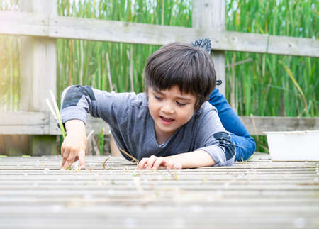 Outdoor portrait of happy boy lying on wooden bridge and looking at camera with smiling face,Active child having fun playing in wildlife park,Kid having adventure in nature reserve in sunny day summer 版權商用圖片 - 152069287