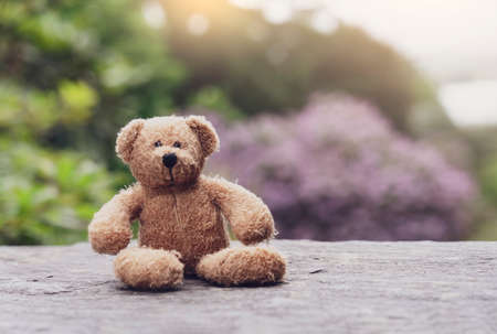 Teddy bear sitting on footpath with blurry natural background, Loneliness brown bear doll sitting alone, Retro and vintage style, lost property, Lonely concept, Lost child, International missing child 版權商用圖片 - 152479609