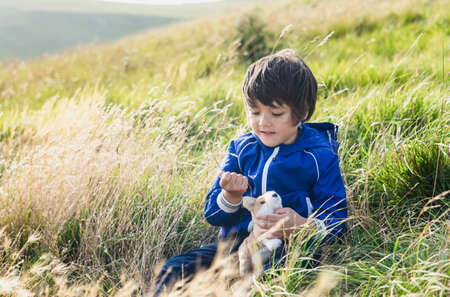 Happy kid playing with straw grass sittng on meadow in the hill, Child boy sitting on grass at the farm field playing outdoor with his toy, Active children relaxing with nature on spring or summer 版權商用圖片
