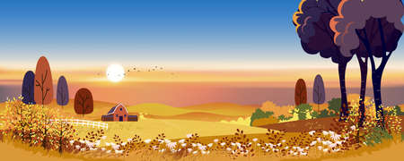 Autumn landscape in countryside with harvest field and farmhouse on hills, Rural nature in Fall season at village with orange field on mountains in evening with sunset, Vector Mid autumn background