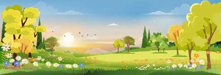 Spring landscape in village with sunset, Vector Spring landscape in village with green field and sunset,Vector flat cartoon rural farmland with mountain and forest, pink and blue sky, Natural scene in countryside,Panorama view on sunny day Summer