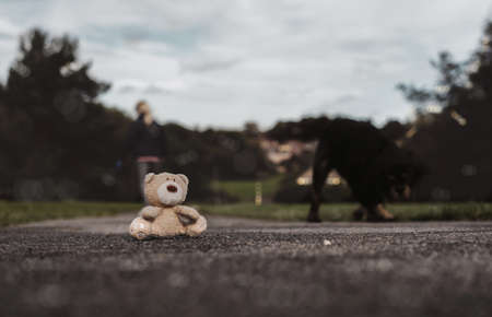 Lost Teddy bear doll sitting on footpath with blurry dog and women walking behind in dramatic light, Lonely brown bear toy with sad face looking out in public park,International missing children's day