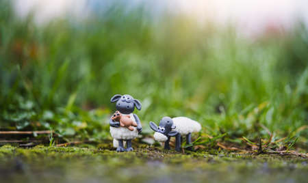cute sheeps toy standing in green grass after rain, Two Little  lamb toy with blurry bokeh natural green meadow. 版權商用圖片