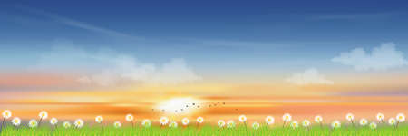 Morning sky with orange and blue sky with clouds, Natural Spring landscape in countryside with daisy and green meadow,Vector cartoon Summer landscape,Panoramic village with grass field and wildflower