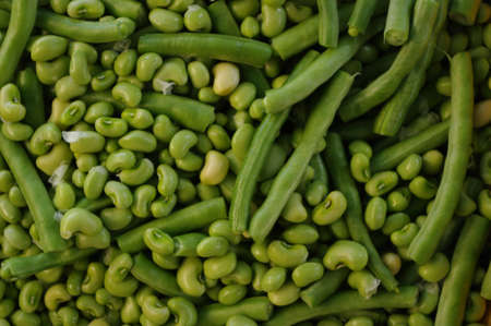 green beans: Jud�as verdes frescas