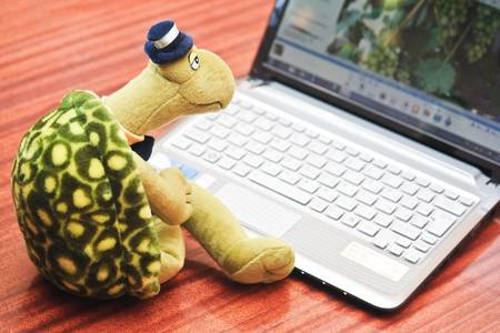 netbooks: Toy turtle sits in front of netbook as sluggish working concept