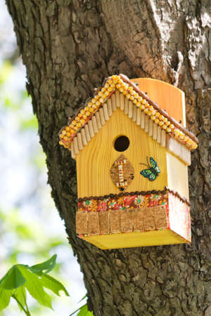 Homemade painted colorful wooden bird house on a tree in spring Stock Photo - 9878129