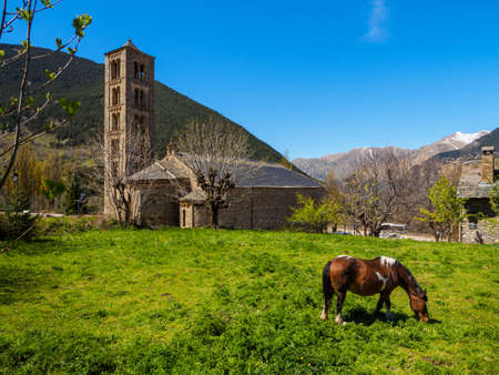 Horse grazing at the foot of the Romanesque church of Tall,