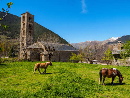 Horses grazing at the foot of the Romanesque church of Tall,