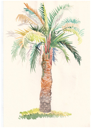 Color landscape watercolor painting of palm trees and red canopy photo