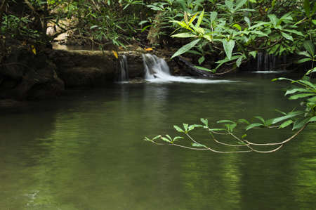 Waterfall in green forest Stock Photo - 12865388