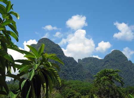 Limestone Cliffs Covered With Vegetation in Khao Sok, Thailand photo