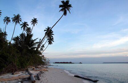 dive trip: Maratua Paradise Resort, Maratua, Indonesia