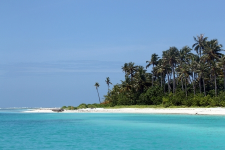 atoll: Beach with White Sand and Coconut Palm Trees, Olhuveli Island, South Male Atoll, Maldives