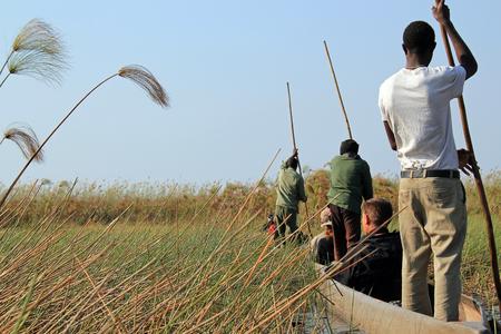 dugout: Mokoro Safari in Okavango Delta, Botswana Stock Photo