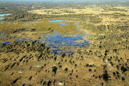 delta: Aerial Photo of the Okavango Delta, Botswana