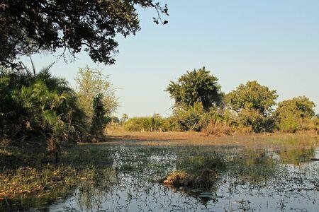botswana: Okavango Delta, Botswana Stock Photo