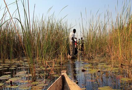 Mokoro Safari in Okavango Delta Standard-Bild - 49135984