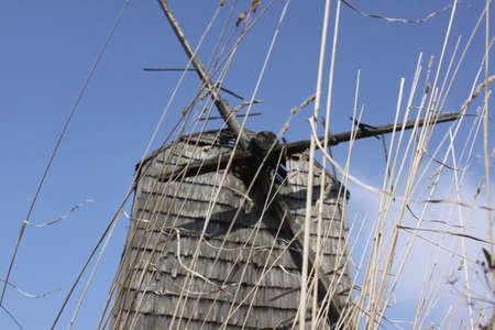 transience: Windmill