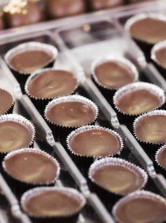 praline: Chocolade praline Stockfoto