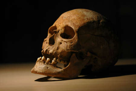 obscurity: Skull