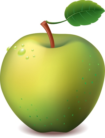 gamme de produit: pomme verte isol�e sur l'illustration vectorielle blanc photo-r�aliste