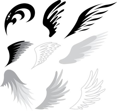 ali angelo: tatuaggio ali Vettoriali