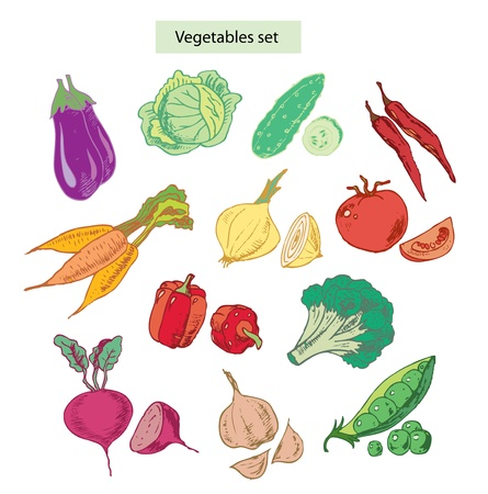 sweet pea: vegetables set hand drawn illustrations