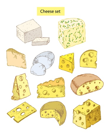 variety: cheese set hand drawn illustrations Illustration