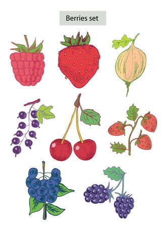 range fruit: berries set hand drawn illustrations
