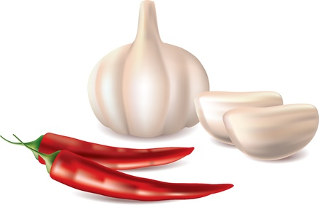 hot spices garlic and red chilli pepper isolated on   white photo-realistic vector illustration Stock Vector - 13001657