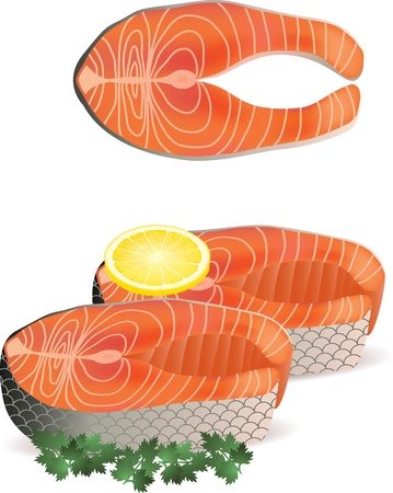 piece of salmon with lemon isolated on white photo-realistic vector   illustration Illustration