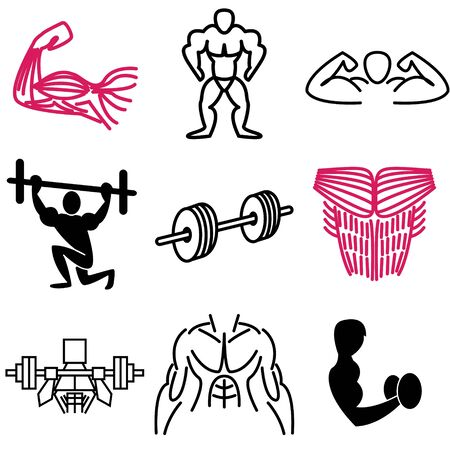 bicep: muscle icons vector set  Illustration