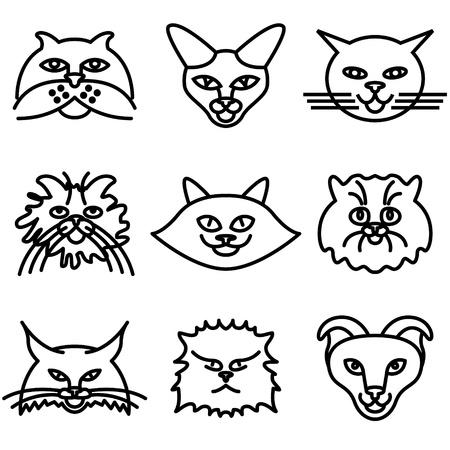 lince: caras de gato conjunto iconos vectoriales