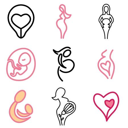embrion: el embarazo y la maternidad conjunto de vectores iconos Vectores