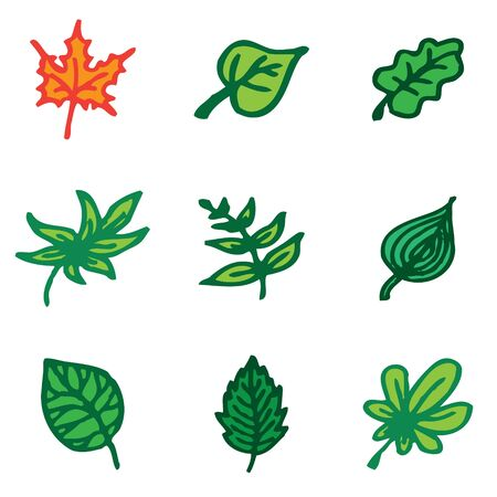nettle: leaves hand drawn icons in vector Illustration