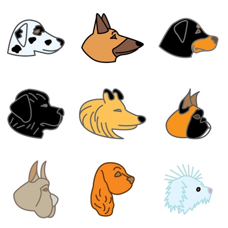 spaniel: breeds of dogs hand drawn icons in vector