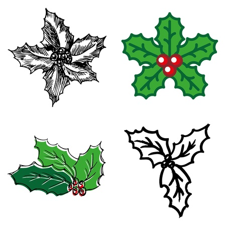 holly berry: holly berry hand-drawn icons set  Illustration