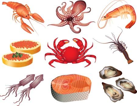 owoce morza: seafood picture-realistyczny zestaw Ilustracja