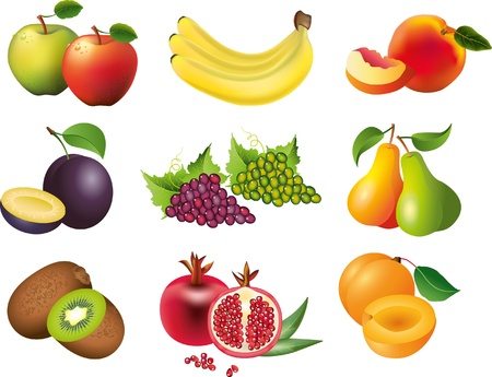 fruits picture-realistic illustration set Vector