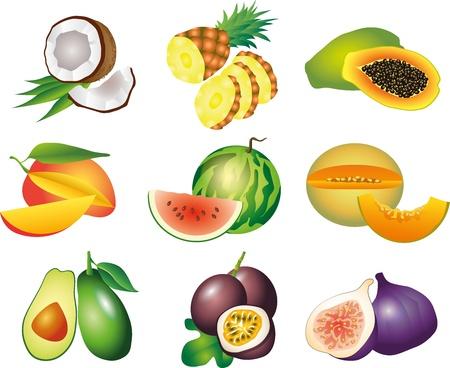 feuille de vigne: fruits exotiques image réaliste set illustration Illustration