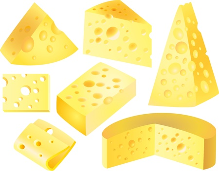 morsel: cheese picture-realistic illustration set