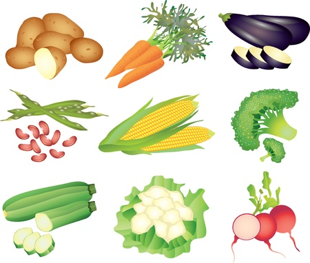 green beans: vegetables picture-realistic illustration set Illustration