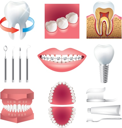 tooth healthcare and stomatology photo-realistic vector set Vector