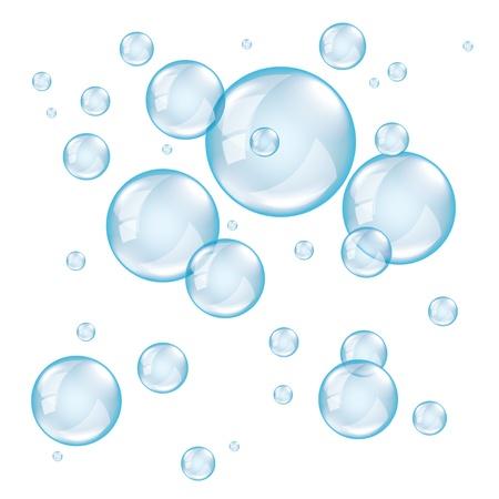 bulles de savon: Bulles de savon transparent sur fond blanc photo r�aliste vecteur Illustration