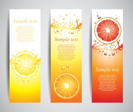 jugo de frutas: Citrus en salpicaduras jugosas conjunto de banners de vector Vectores