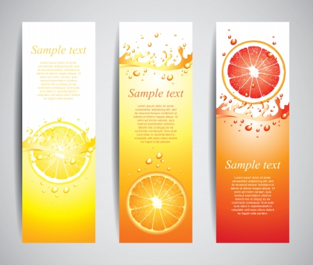 Citrus in juicy splashes set of banners in vector