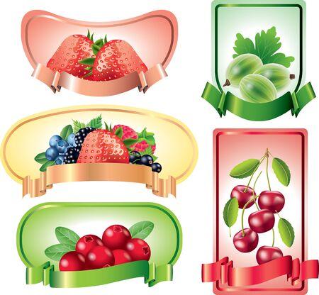 cranberry: Berries on colorful labels backgrounds vector set Illustration